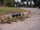 Clogged Stormwater Drain 2 Picture