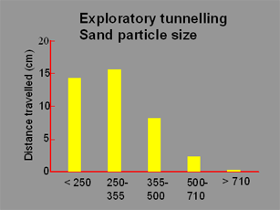 Exploratory Tunnelling Particle Size Graphic