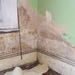 Rising Damp 2 Picture